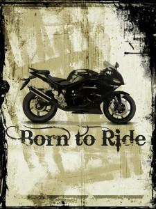 bike-976263_640